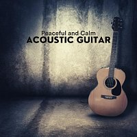 Chris Mercer, Thomas Tiersen, James Shanon, Frank Greenwood, Richie Aikman – Peaceful and Calm Acoustic Guitar