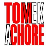 Tom Vek – A Chore