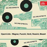 Různí interpreti – Operní árie /Wagner, Puccini, Verdi, Rossini, Mozart