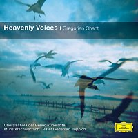 Benedictine Monks of the Abbey Munsterschwarzach, Pater Godehard Joppich – Heavenly Voices - Gregorian Chant