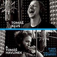 Tomáš Klus, Tomáš Havlínek – Já viděl křídla (Píseň z muzikálu Elefantazie)