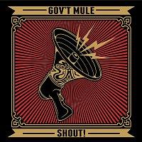 Gov't Mule – Shout!
