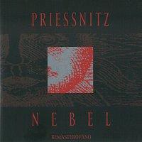Priessnitz – Nebel