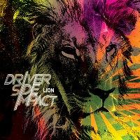 Driver Side Impact – Lion
