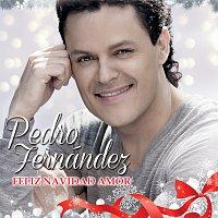 Pedro Fernández – Feliz Navidad Amor