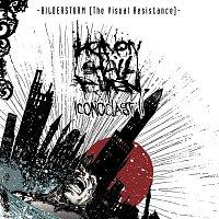 Heaven Shall Burn – Bildersturm: Iconoclast II (The Visual Resistance)