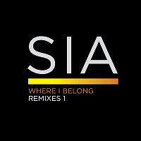 Sia – Where I Belong Remixes 1