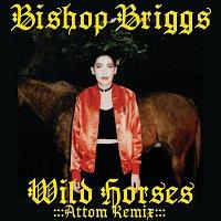 Bishop Briggs – Wild Horses [Attom Remix]