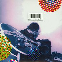 The Flaming Lips – Due To High Expectations...The Flaming Lips Are Providing Needles For Your Balloons