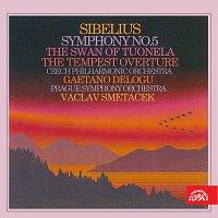 Sibelius: Symfonie č. 5, Labuť z Tuonely, Bouře