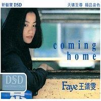 Faye Wong – Coming Home