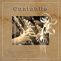Symphonic wind orchestra Stadtmusikkapelle Landeck, Saskia Roczek – Cantabile