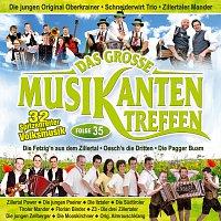 Různí interpreti – Das grosze Musikantentreffen - Folge 35