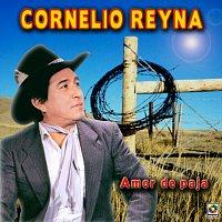 Cornelio Reyna – Amor de Paja