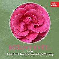 Dechová hudba Antonína Votavy – Růžový květ....Hraje Dechová hudba Antonína Votavy