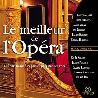 Various  Artists – Le meilleur de l'opéra