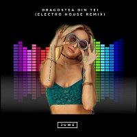 Přední strana obalu CD Dragostea Din Tei (Electro House Remix)