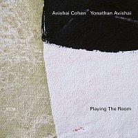 Avishai Cohen, Yonathan Avishai – Playing The Room