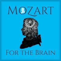 Různí interpreti – Mozart For The Brain
