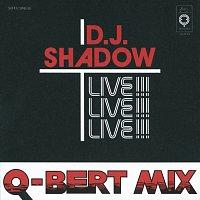 DJ Shadow – Camel Bobsled Race