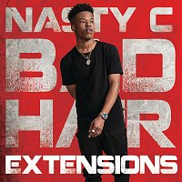 Nasty C – Bad Hair Extensions