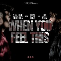 Stafford Brothers, Jay Sean, Rick Ross – When You Feel This