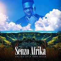 Senzo Afrika, Abidoza, PlayKeys – Usebenzel' ikhaya