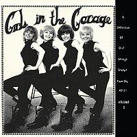 Různí interpreti – Girls in the Garage, Vol. 2