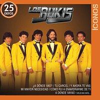 Los Bukis – Íconos 25 Éxitos
