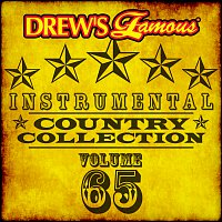 The Hit Crew – Drew's Famous Instrumental Country Collection [Vol. 65]