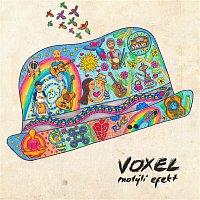 Voxel – Motyli efekt