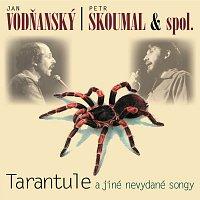 Jan Vodňanský, Petr Skoumal – Tarantule