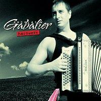 Andreas Gabalier – Herzwerk
