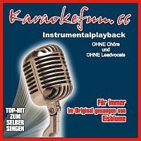 Karaokefun.cc VA – Fur immer - Instrumental - Karaoke