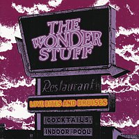 The Wonder Stuff – Love Bites & Bruises -A  Wonder Stuff Compilation [Double CD]