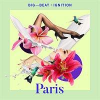 Various Artists.. – Big Beat Ignition: Paris