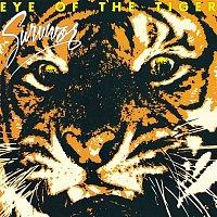 Survivor – Eye Of The Tiger