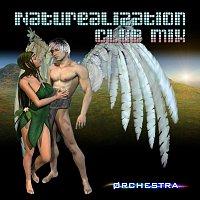 Void Orchestra – Naturealization Club Mix