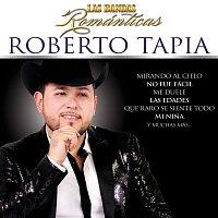 Roberto Tapia – Las Bandas Románticas