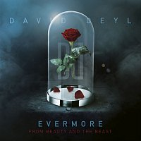 "David Deyl – Evermore (From ""Beauty and the Beast"")"