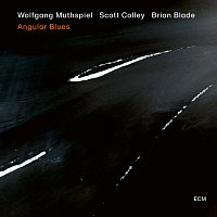 Wolfgang Muthspiel, Scott Colley, Brian Blade – Everything I Love