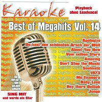 Karaokefun.cc VA – Best of Megahits Vol.14