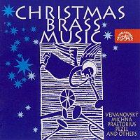 Přední strana obalu CD Vánoční hudba pro žestě Vejvanovský, Praetorius, Pecelius, Michna