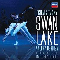 Orchestra of the Mariinsky Theatre, Valery Gergiev – Tchaikovsky: Swan Lake (highlights)