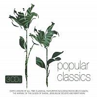 Přední strana obalu CD Popular Classics