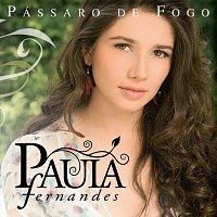 Přední strana obalu CD Pássaro De Fogo