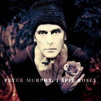 Peter Murphy – I Spit Roses