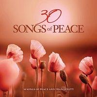 Přední strana obalu CD 30 Songs Of Peace