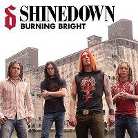 Shinedown – Burning Bright