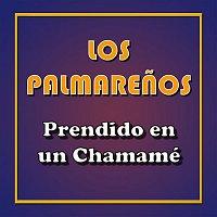 Los Palmarenos – Prendido en un Chamamé